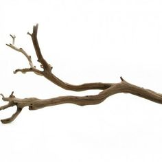 3 Masterful Clever Hacks: Natural Home Decor Wood Tree Branches natural home decor bedroom paint colors.Natural Home Decor Ideas Tree Stumps natural home decor inspiration living rooms.Natural Home Decor Ideas Benjamin Moore. Natural Homes, Natural Home Decor, Boho Decor, Rustic Decor, Decor Diy, Decor Ideas, Decor Crafts, Feng Shui, Chandeliers