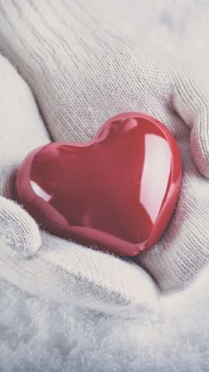 Heart And Mind, Love Heart, Wallpaper S, Wallpaper Quotes, Cute Pictures, Beautiful Pictures, Lock Screen Backgrounds, Heart In Nature, Iphone 7 Wallpapers