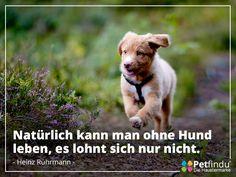 Zitat von Heinz Rührmann