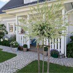 Landscaping Design, Front Yard Landscaping, Pergola, Outdoor Structures, Patio, Landscape, Places, Plants, Garten