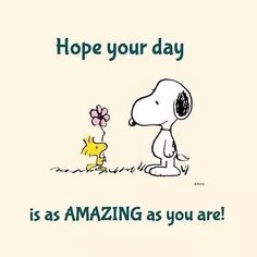 Charlie Brown with Snoopy. Snoopy Images, Snoopy Pictures, Funny Pictures, Phrase Cute, Charlie Brown Quotes, Peanuts Quotes, Snoopy Love, Snoopy Quotes Love, Snoopy And Woodstock