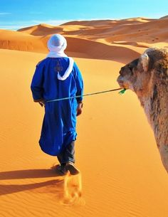 Camel ride in the desert. Things to do before I die.