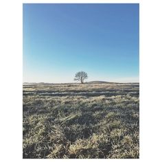 Beautiful frosty morning at the studio . . . #feldsparstudio #devon #countryliving #dartmoor #frosty #instagood #blueskies #slowliving