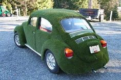 Nature inspired design ideas, that offer creative ways to add green grass to home decorating, reflect the latest trends in eco friendly architecture and organic interior design Volkswagen, Amazing Grass, Faux Grass, Growing Grass, Beetle Car, Funny Picture Jokes, Astro Turf, Green Theme, Weird Cars