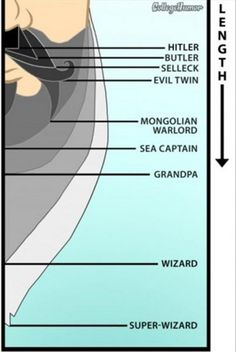 what does your beard length say about you, funny beard graphs