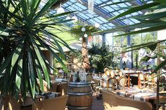 Neuenburger Glashaus Glass House, Plants, Conservatory, House Of Glass, Greenhouses, Plant, Green Houses, Planting, Planets