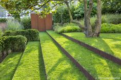 Holly Lodge Estate Garden, London Garden Designer