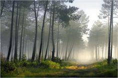 NATURE ET PAYSAGES PHOTOGRAPHIE JEAN-CHRISTOPHE POUMEYROL