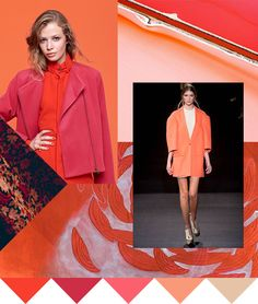 Color   Hot Coral