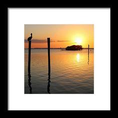 silhouette, sunset, bird, landscape, pier, pelican, trees, florida, pineland, michiale schneider photography, framed prints, interior decor