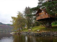 Sweet Tree House