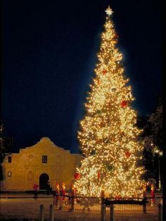 San Antonio, Texas The Christmas tree at Alamo Plaza gets lit every year on November 26.