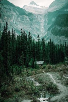 Cabin homes, outdoor activities, beautiful landscapes, wilderness, nature p Into The Woods, Cabins In The Woods, House In The Woods, Beautiful Places, Beautiful Pictures, H & M Home, The Mountains Are Calling, Cabins And Cottages, Foto Art