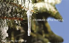 Juniper Village at Brookline Rehab and Skilled Care: Celebrate Little Things: December Events