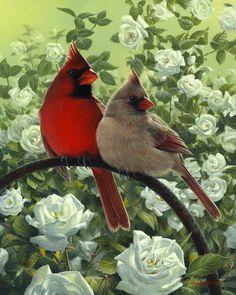 Bower Cardinals -  by Joe Hautman