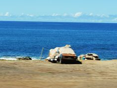 Another example of vagrants living on the beauitful beaches of Hawii.