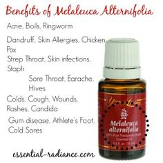 What Melaleuca can do for you. sign up: https://www.youngliving.com/signup/?sponsorid=2239735&enrollerid=2239735  #YL
