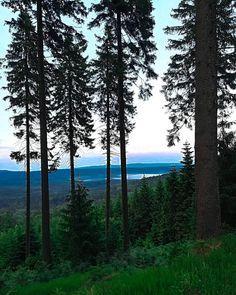 Piękne widoki na tym Zieleńcu . . . #travel #trip #adventure #picoftheday #photooftheday #travelgram #wanderlust #instatravel #view #travelphotography #nature #landscape #beautifuldestinations #traveller #traveling #tourism #tourist #wonderful_places #polska #poland #photo #photography #podróż #podróże #wycieczka #zieleniec #widoki #krajobraz #mountain #góry Land Scape, Eagle, Wanderlust, Celestial, Mountains, Sunset, Nature, Photography, Travel