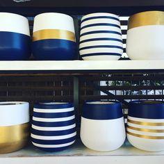 Cement Art, Clay Pot Crafts, Concrete Crafts, Diy Home Crafts, Painted Plant Pots, Painted Flower Pots, Diy Planters, Ceramic Planters, Pottery Painting Designs