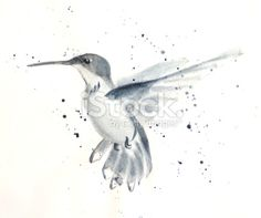 original hummingbird drawing id e tatouage tatouages et id e. Black Bedroom Furniture Sets. Home Design Ideas