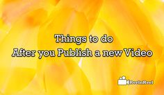 Things to do after you Publish a New Video