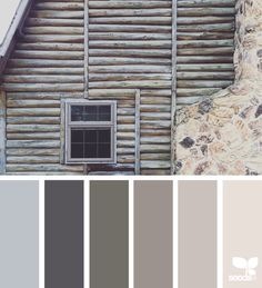 color dwell | design seeds | Bloglovin'