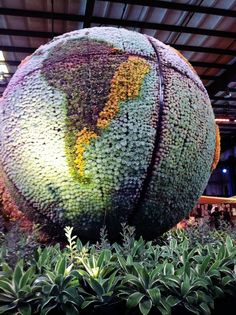 Incredible succulent globe at the San Francisco Flower and Garden Show by Robin Stockwell and Succulent Gardens http://sgplants.com