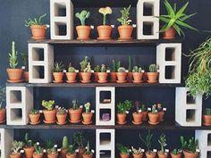 plant storage