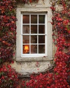 Ana Rosa: Red leaves at the window Old Windows, Windows And Doors, Exterior Windows, Sash Windows, France Photos, Window View, Window Detail, Photo Window, Through The Window