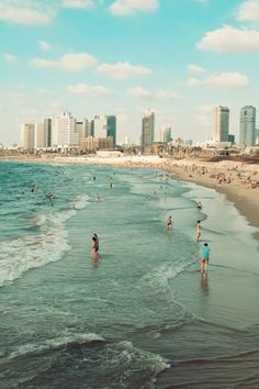 Tel Aviv's sandy shoreline runs for miles and is home to a host of dog owners… Spring Break Destinations, Travel Destinations, Places To Travel, Places To See, Travel Around The World, Around The Worlds, Tel Aviv Beach, Tel Aviv Israel, Israel Travel