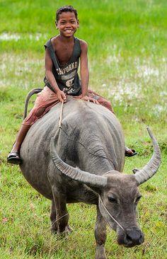 Taking a ride with his favorite buffalo Cambodia Travel, Thailand Travel, Laos, Vietnam, Buffalo Animal, Water Buffalo, Koh Tao, Smile Face, People Around The World