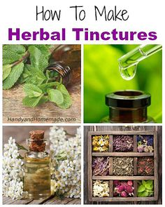 How To Make Herbal Tinctures At Home, DIY