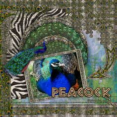 PEACOCK: Peacock at the zoo.  I made this page with Zoobahlou! The Bundle and Zen Zoo Art Pieces by Altered Amanda's Studio, available here: http://www.godigitalscrapbooking.com/shop/index.php?main_page=index&manufacturers_id=148 Also used:  aRtStaRtz Mixed Media Art Journal overlays by Altered Amanda's Studio at Go Digital Scrapbooking here: http://www.godigitalscrapbooking.com/shop/index.php?main_page=index&manufacturers_id=148
