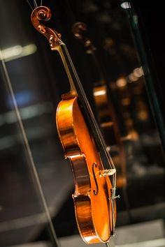 Stradivari Cremona   Italy