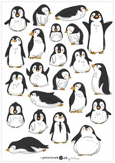 Penguin Drawing Easy, Polar Bear Drawing, Penguin Images, Penguin Art, Pinguin Illustration, Cute Illustration, Penguins And Polar Bears, Cute Penguins, Animal Sketches