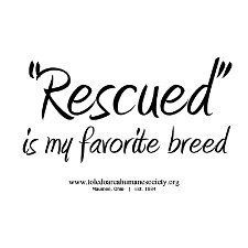 I have four rescue dogs. In 2011, I directly saved the lives of 5 dogs and 4 cats by fostering and transporting, and logged at least 50 volunteer hours for animal rescue organizations. In 2012 I hope to do more, despite being at my limit and no longer being able to foster.