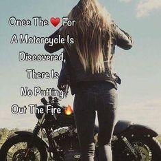 Motorcycle Humor, Motorcycle Tattoos, Motorcycle Parts, Hyabusa Motorcycle, Women Motorcycle Quotes, Motorbike Girl, Chopper Motorcycle, Motorcycle Travel, Motorcycle Garage