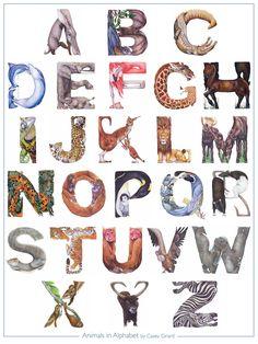Animals in Alphabet  Poster 18 x 24  Casey G by CaseyGirard, $16.00
