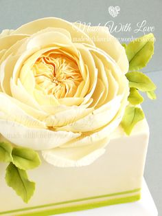 {An Elegant vanilla-cream English Rose by Made With Love}