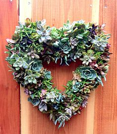 How to Make a Beautiful Succulents Wreath. See how to use cactus plants and succulents to make a natural and organic wreath.