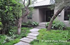 Tough, low-water plants make a lush, shady garden. Sedgey evergreen garden of Pat Mozersky for Foliage Follow-Up | Digging