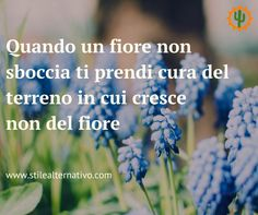 Quando un #fiore non sboccia, ti prendi cura del #terreno in cui cresce - non del fiore. Seguici qui @stilealter & condividi!