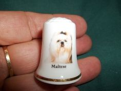 Vintage Maltese Dog Collectible Ceramic Thimble Figurine Lim Edition | eBay