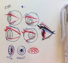 -How to draw eyes - human anatomy - drawing reference Drawing Techniques, Drawing Tips, Drawing Tutorials, Art Tutorials, Drawing Ideas, Drawing Base, Manga Drawing, Figure Drawing, Anatomy Drawing