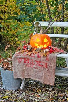 Autumn means it's Halloween time Halloween Boo, Spirit Halloween, Holidays Halloween, Vintage Halloween, Happy Halloween, Halloween Images, Outdoor Halloween, Halloween Ideas, Fall Pumpkins