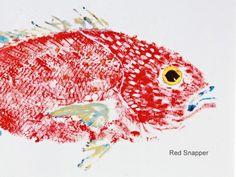 Red Snapper Print :: Fish Aye Trading Fish Rubbing - Prints & Placemats