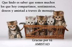 Gracias por tu Amistad #Frases_de_amistad