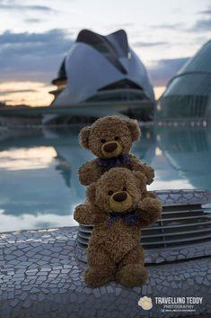 Teddy Bear Images, Teddy Bear Pictures, Teddy Bear Gifts, Cute Teddy Bears, Bear Tumblr, Teddy Hermann, Ted Bear, Bear Girl, Bear Party