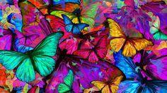 Traum ...Traum ... ein Gedicht welches aus meinen tiefen Gedanken geboren wurde... tragt es weiter auf das es die Herzen berührt...  Viel Freude ihr Lieben...  Bilder&Gedicht (c) Elke Lessing Hinweis zur Musik im Abspann vom Video Kategorie Soziales Engagement Lizenz Standard-YouTube-Lizenz