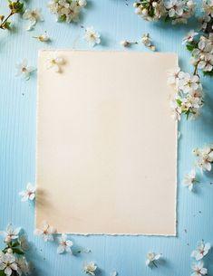 Flower Background Wallpaper, Flower Phone Wallpaper, Background Pictures, Flower Backgrounds, Wallpaper Backgrounds, Iphone Wallpaper, Background Patterns, Lapin Art, Instagram Frame